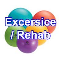 Exercise/Rehab